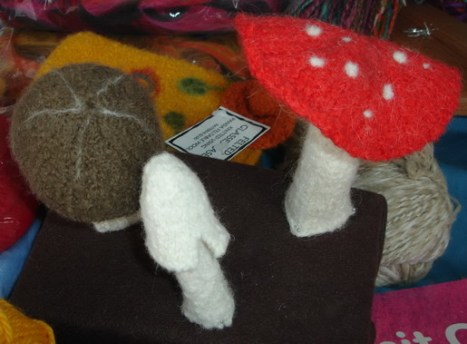 These cute knitted fungi were the perfect postscript to a wet holiday